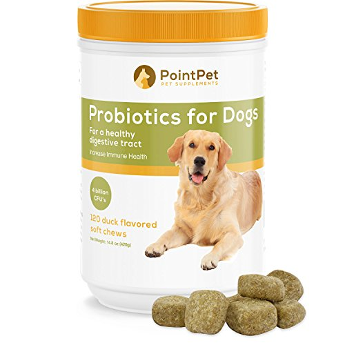 PointPet Probiotics For Dogs