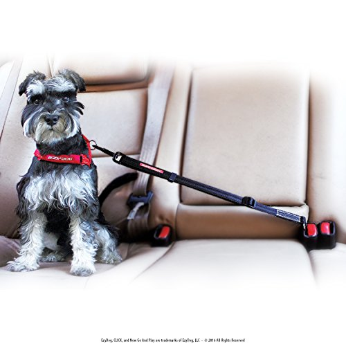 EzyDog CLICK Dog Seat Belt