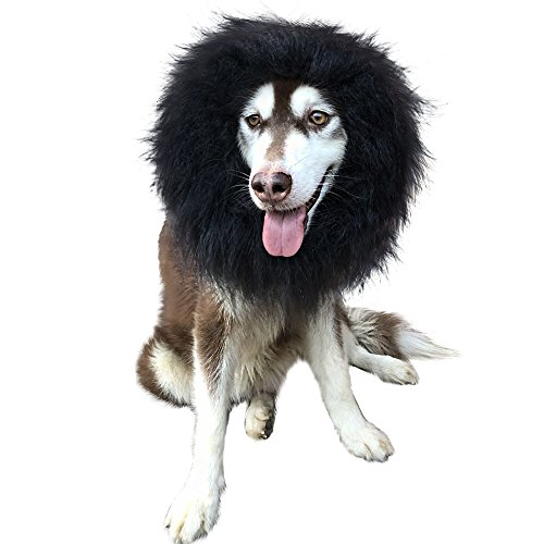 Lion Mane Wig Dog Costume