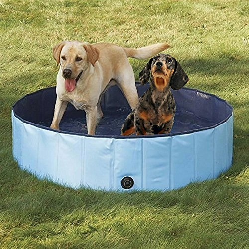 PYRUS Collapsible Pet Bath