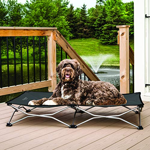 Carlson Pet Products Elevated Folding Pet Bed