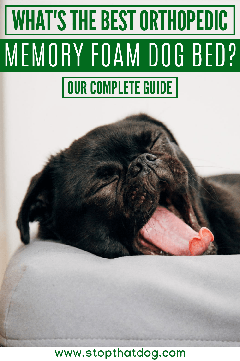 What's The Best Orthopedic Memory Foam Dog Bed? Our Complete Guide