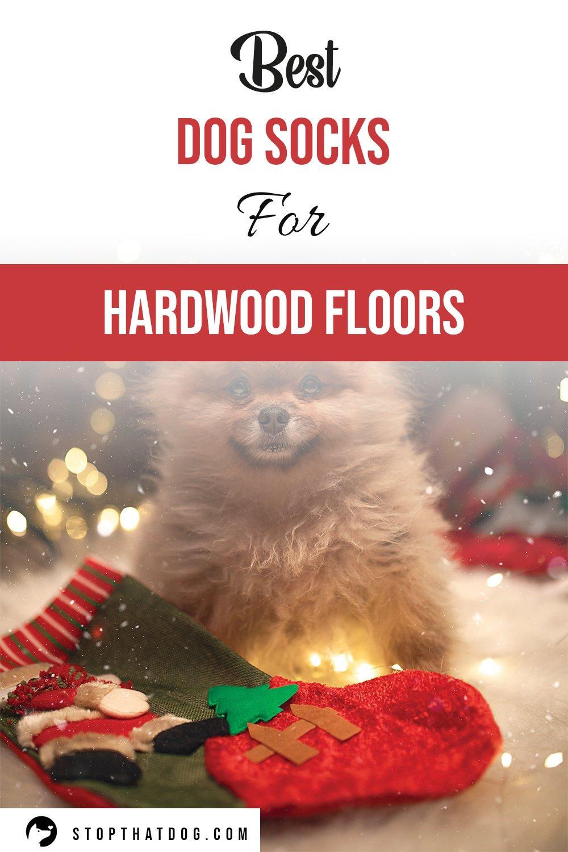 What Are The Best Dog Socks For Hardwood Floors? (2020)
