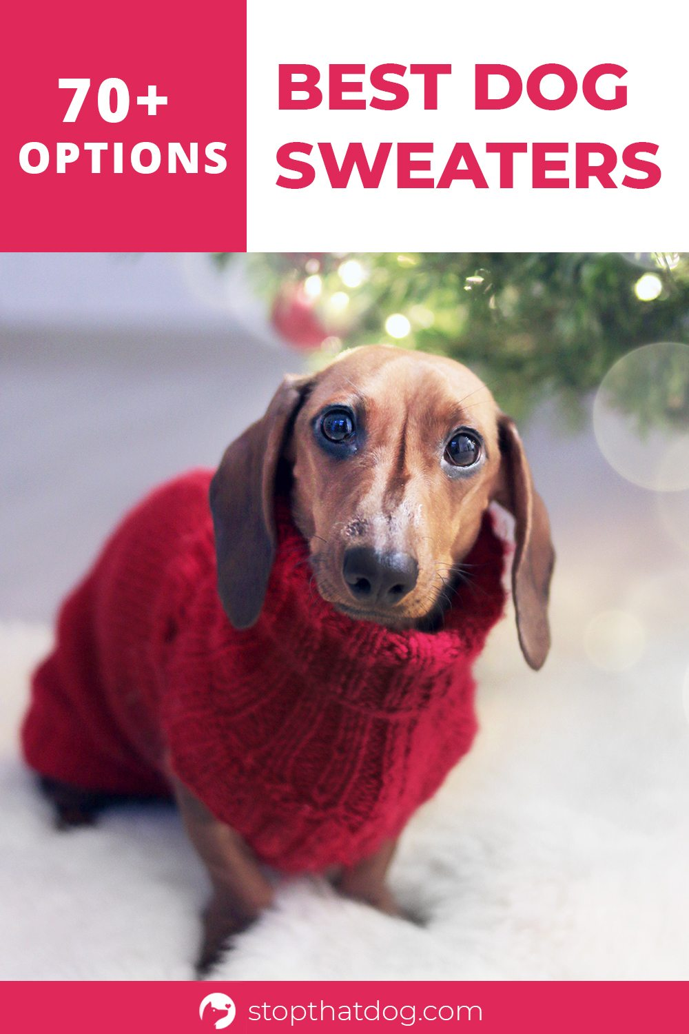 The Best Dog Sweaters For 2020 (Over 70+ Options To Choose From!)
