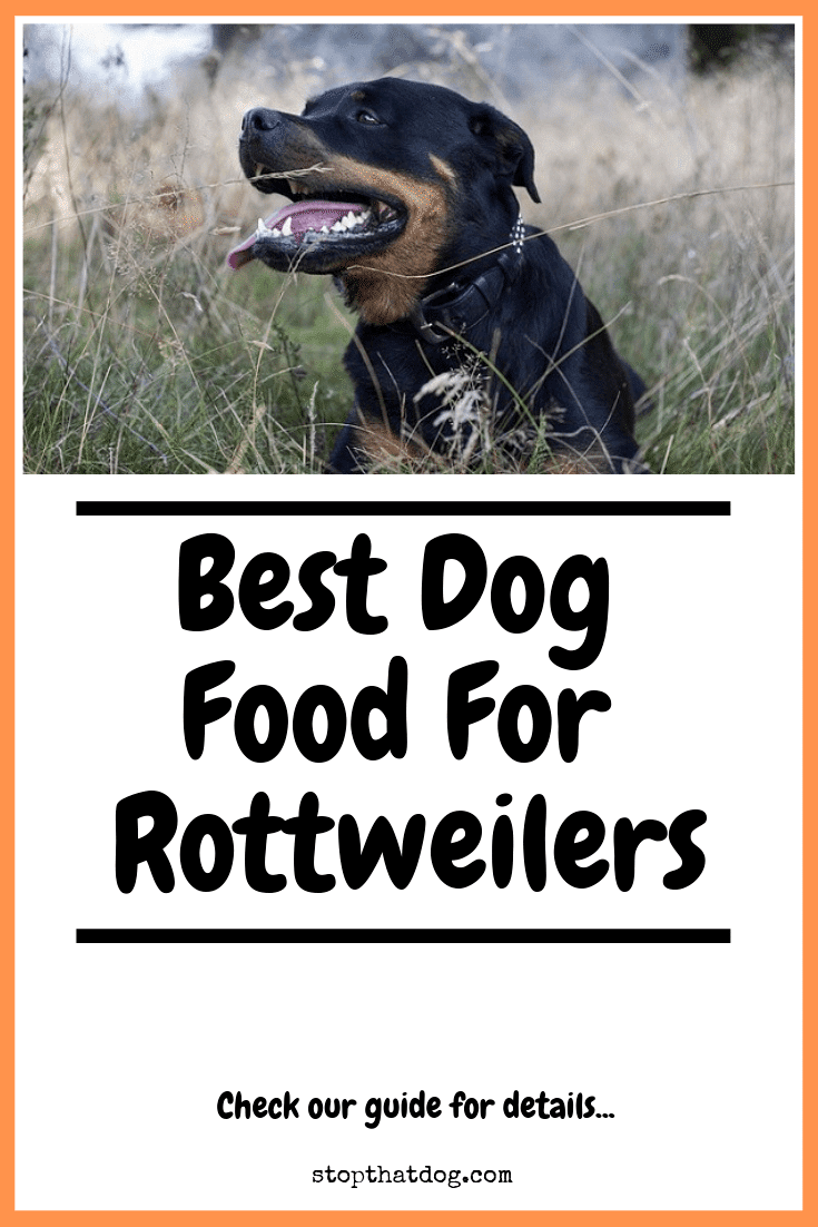 Best Dog Food for Rottweilers - The Top Options