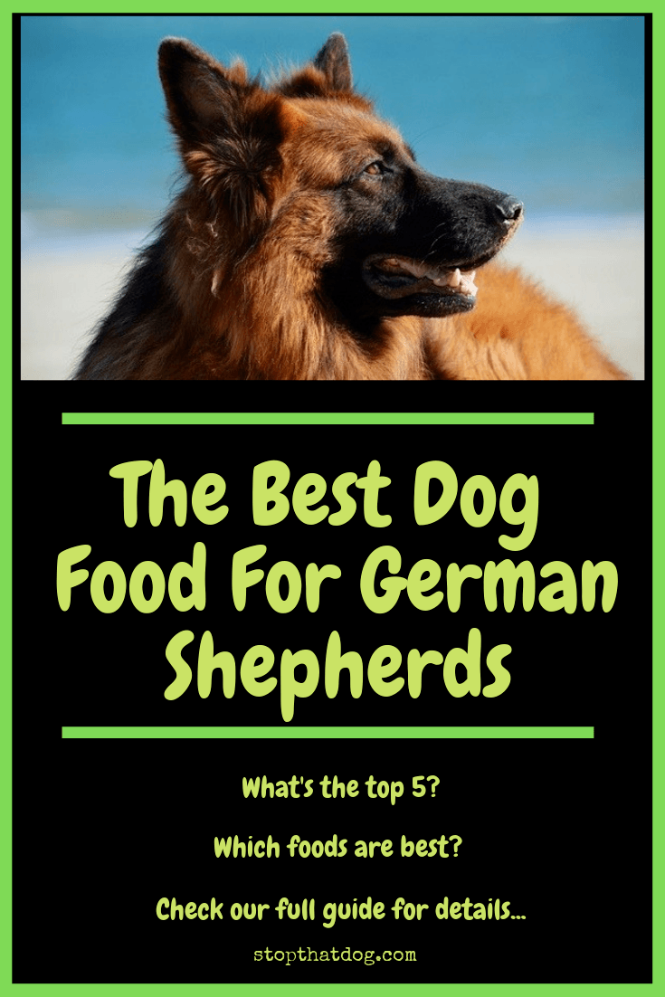 What's The Best Dog Food for German Shepherds?