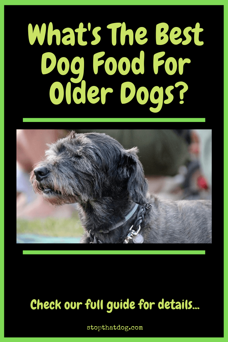 What\'s The Best Dog Food For Older Dogs?
