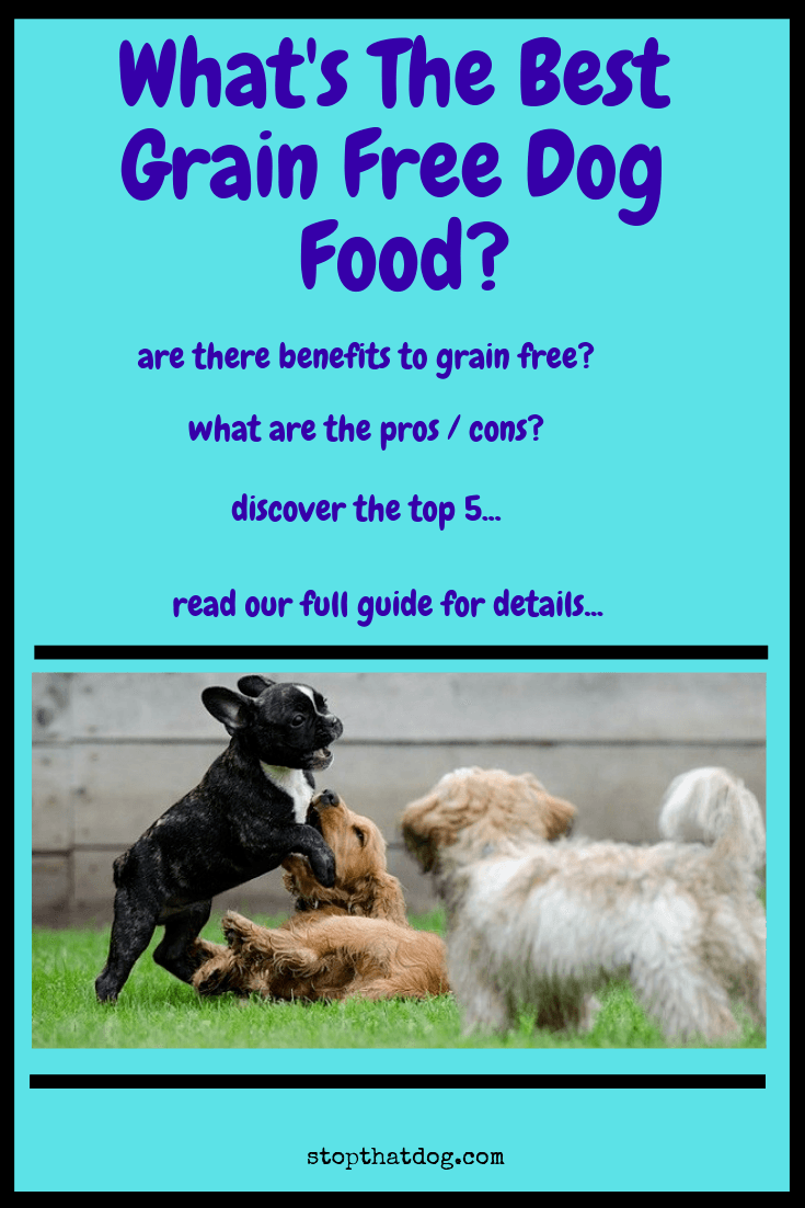 What\'s The Best Grain Free Dog Food?