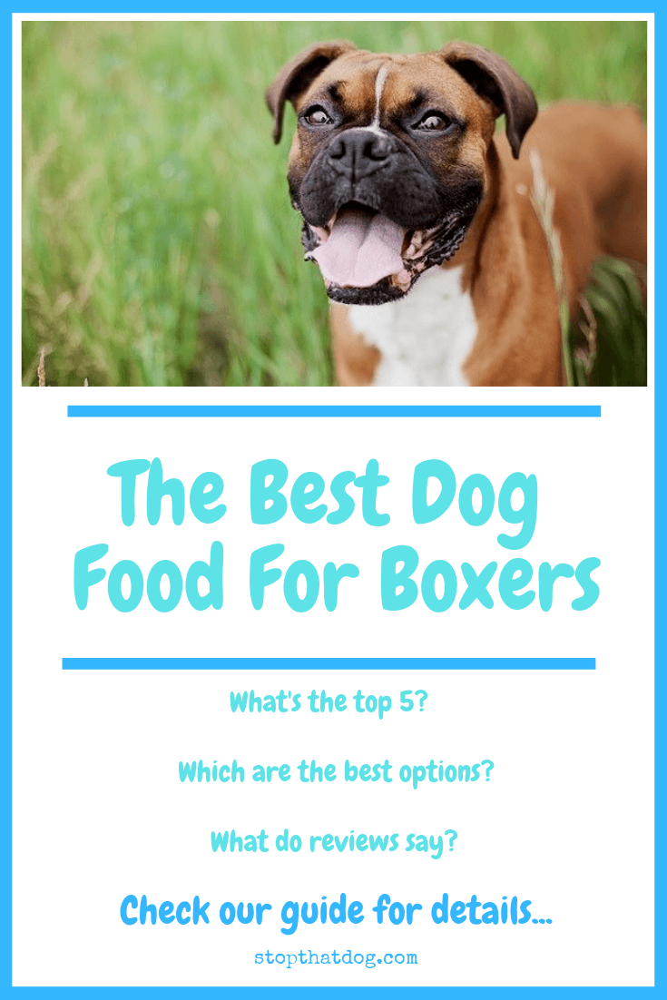 What's The Best Dog Food For Boxers? Our Ultimate Guide