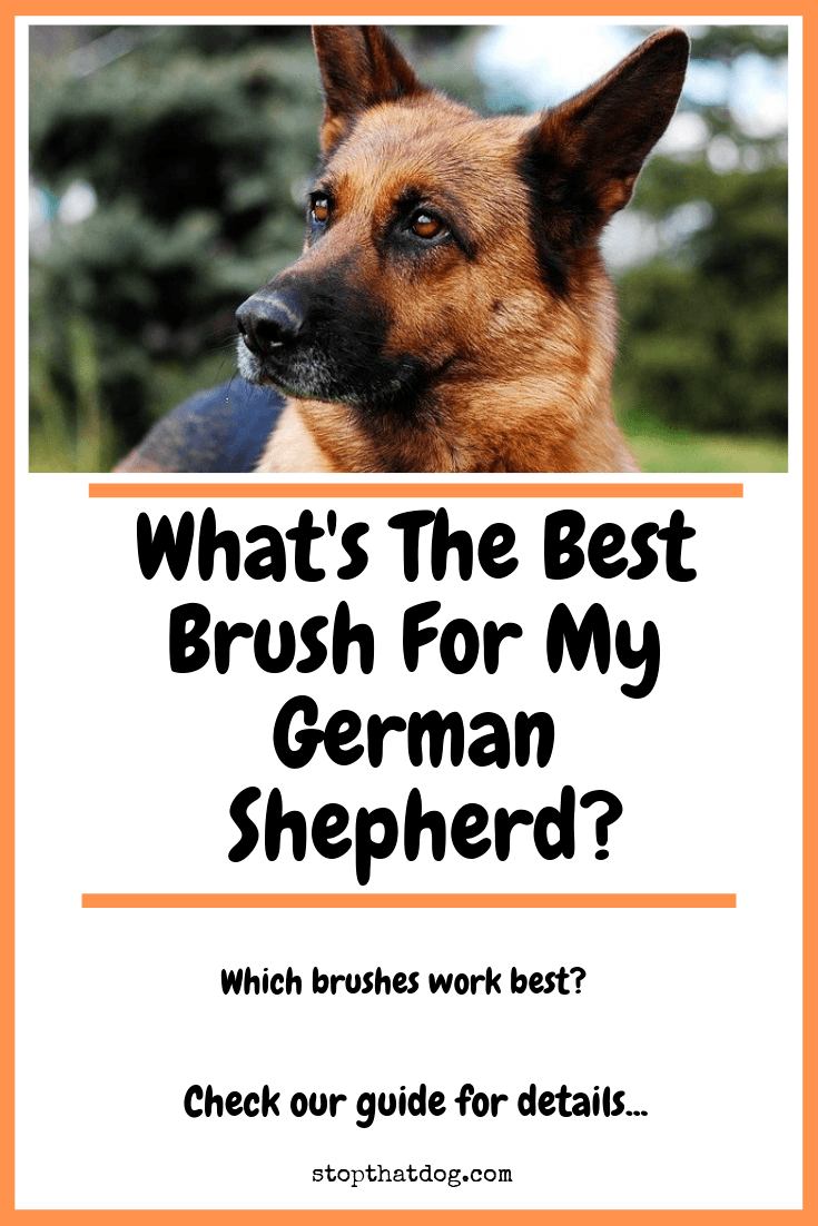 What's The Best Brush For My German Shepherd?