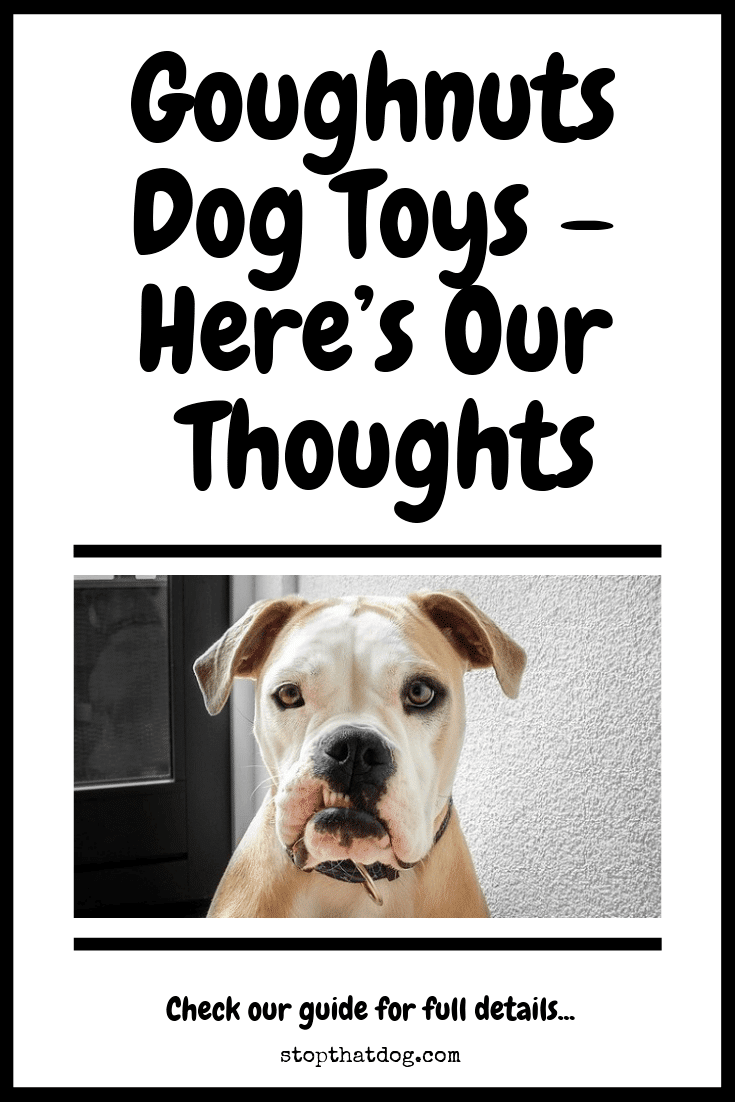 Are Goughnuts Dog Toys Any Good? Here's Our Top Picks