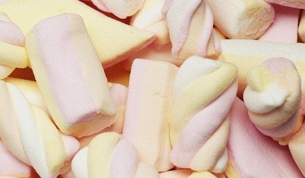 Can Dogs Eat Marshmallows? 1