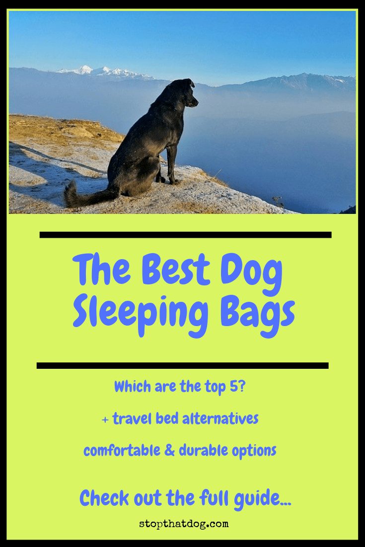 What\'s The Best Dog Sleeping Bag On The Market?