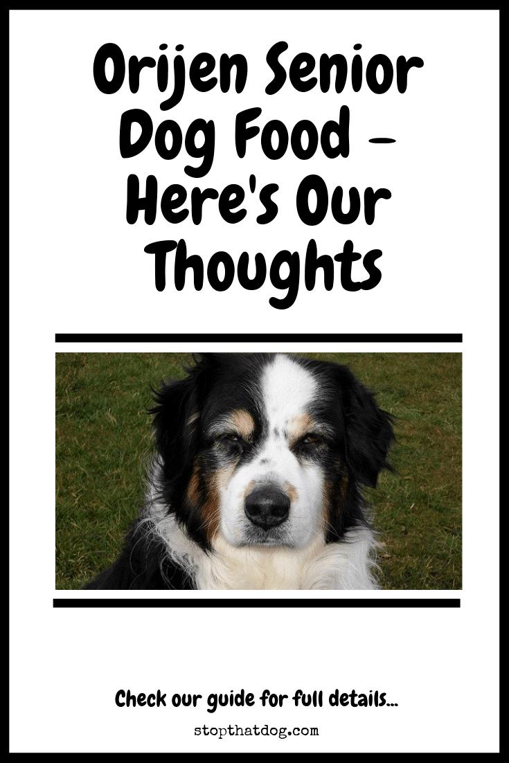 Is Orijen Senior Dog Food Good Or Bad For Older Dogs?