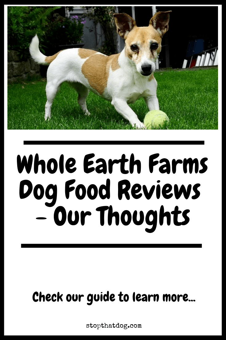 Is Whole Earth Farms Dog Food Any Good? Here's Our Thoughts