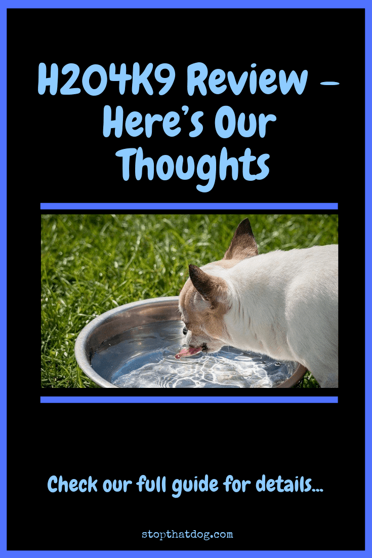 H204K9 Review - Here\'s Our Thoughts