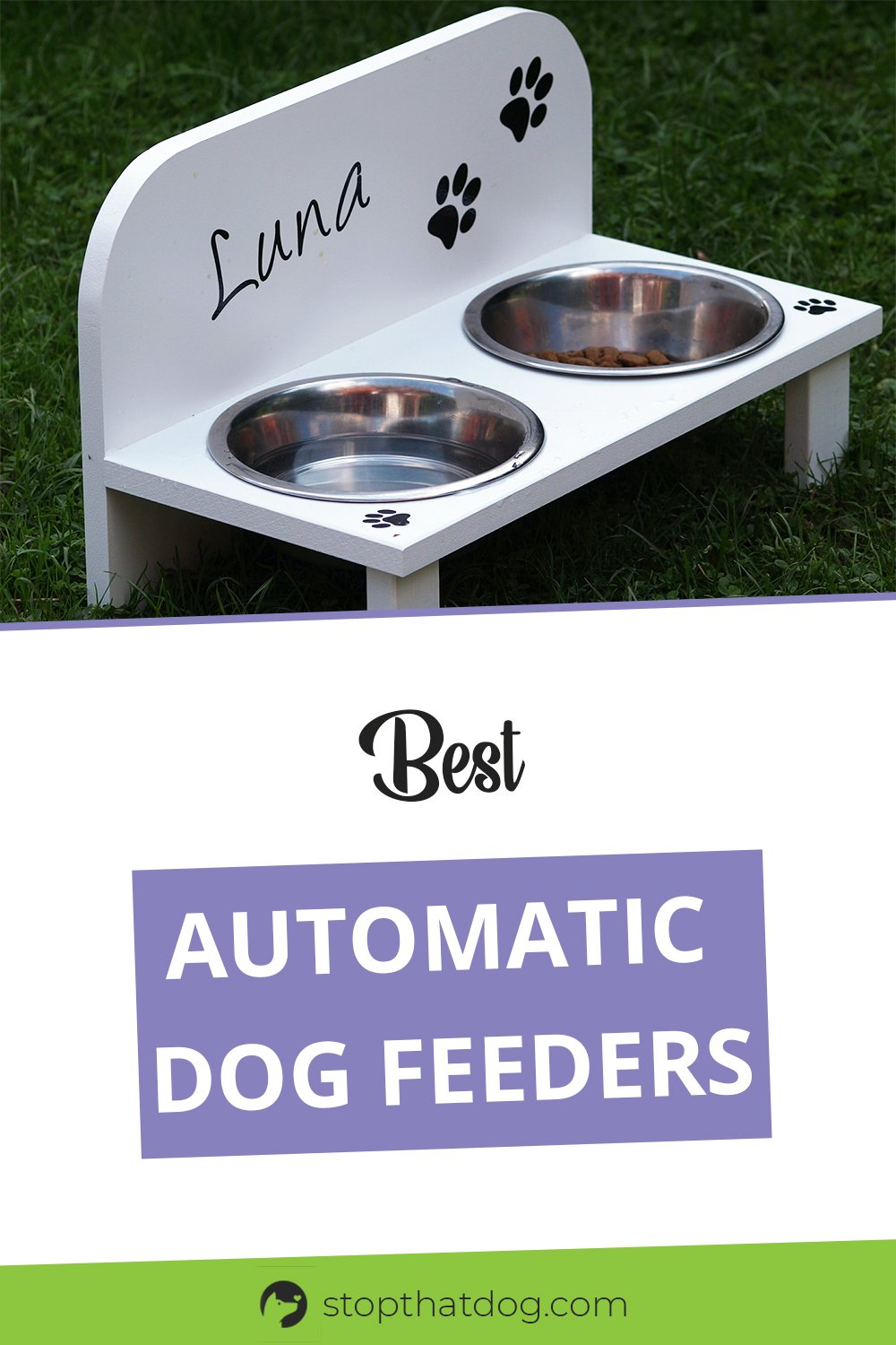 What's The Best Automatic Dog Feeder? Check Our Top Picks