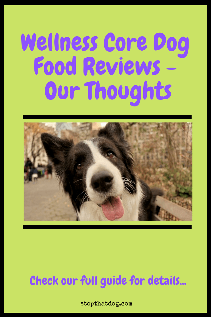 Is Wellness Core Dog Food Any Good? Here\'s Our Review