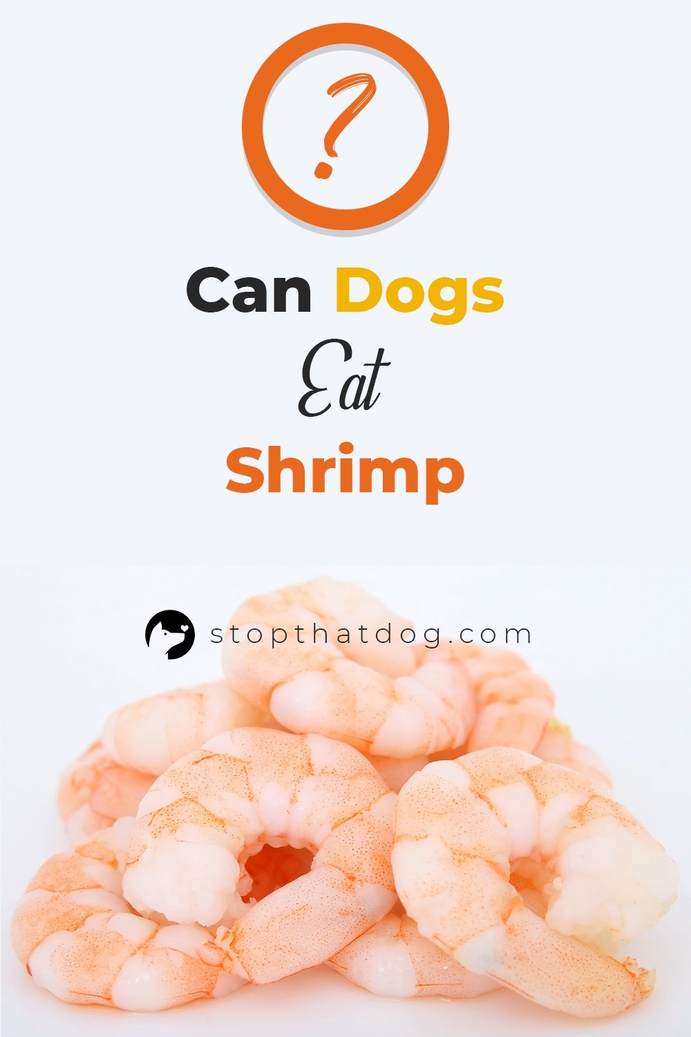 Can Dogs Eat Shrimp?