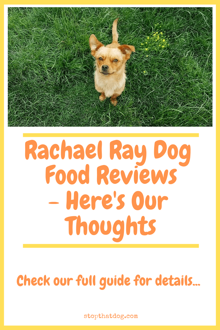 Is Rachael Ray Dog Food Any Good? Here's Our Thoughts