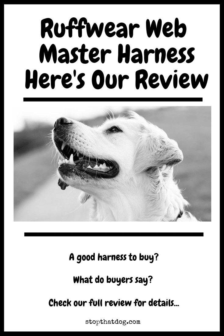 Is The Ruffwear Webmaster Harness Any Good? Here\'s Our Review