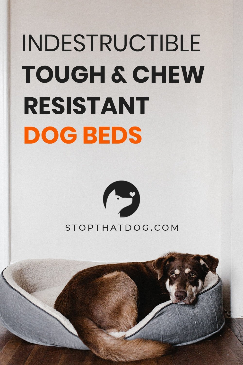 What Are The Best Indestructible & Chew Resistant Dog Beds?