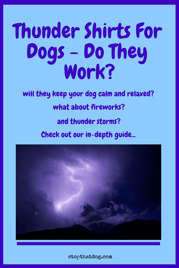 Do Thundershirts Really Work? Here\'s Our Review