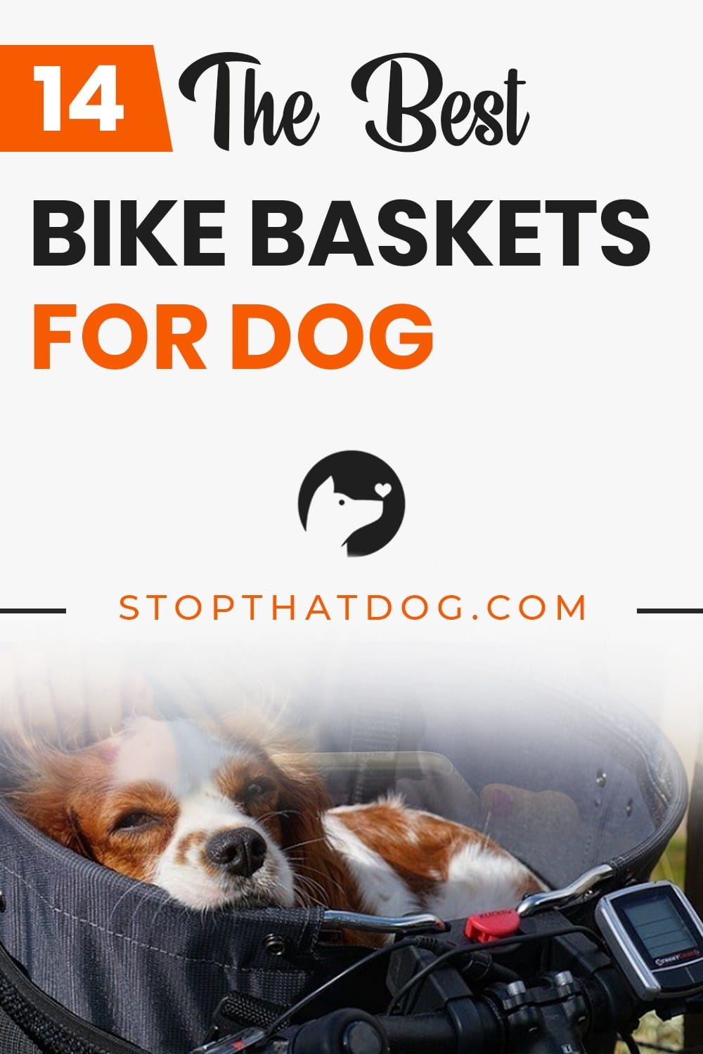 What Are The Best Bike Baskets For Dogs In 2020? Here's An In-Depth Guide