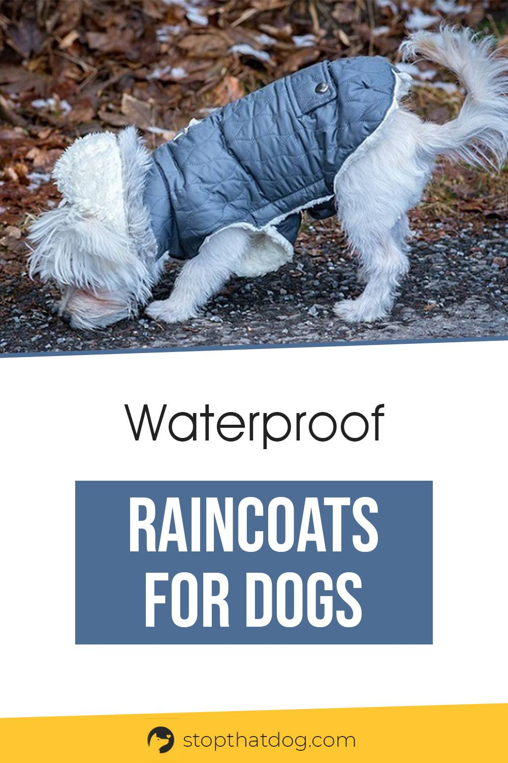 Waterproof Raincoats For Dogs - The Definitive Guide (2020)