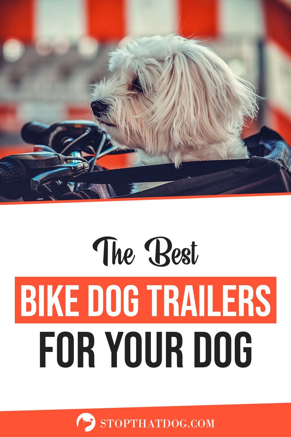 What's The Best Bike Trailer For My Dog In 2020? Our In-Depth Guide