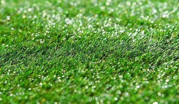 What's The Best Artificial Grass For Dogs? Our Ultimate Guide (2020) 1