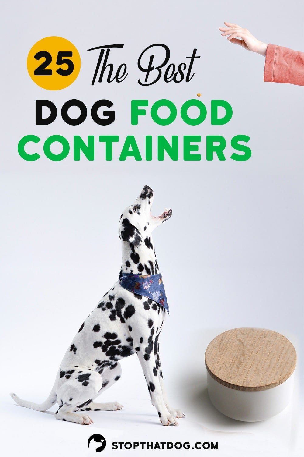 The Best Dog Food Containers For 2020 – A Comprehensive Guide