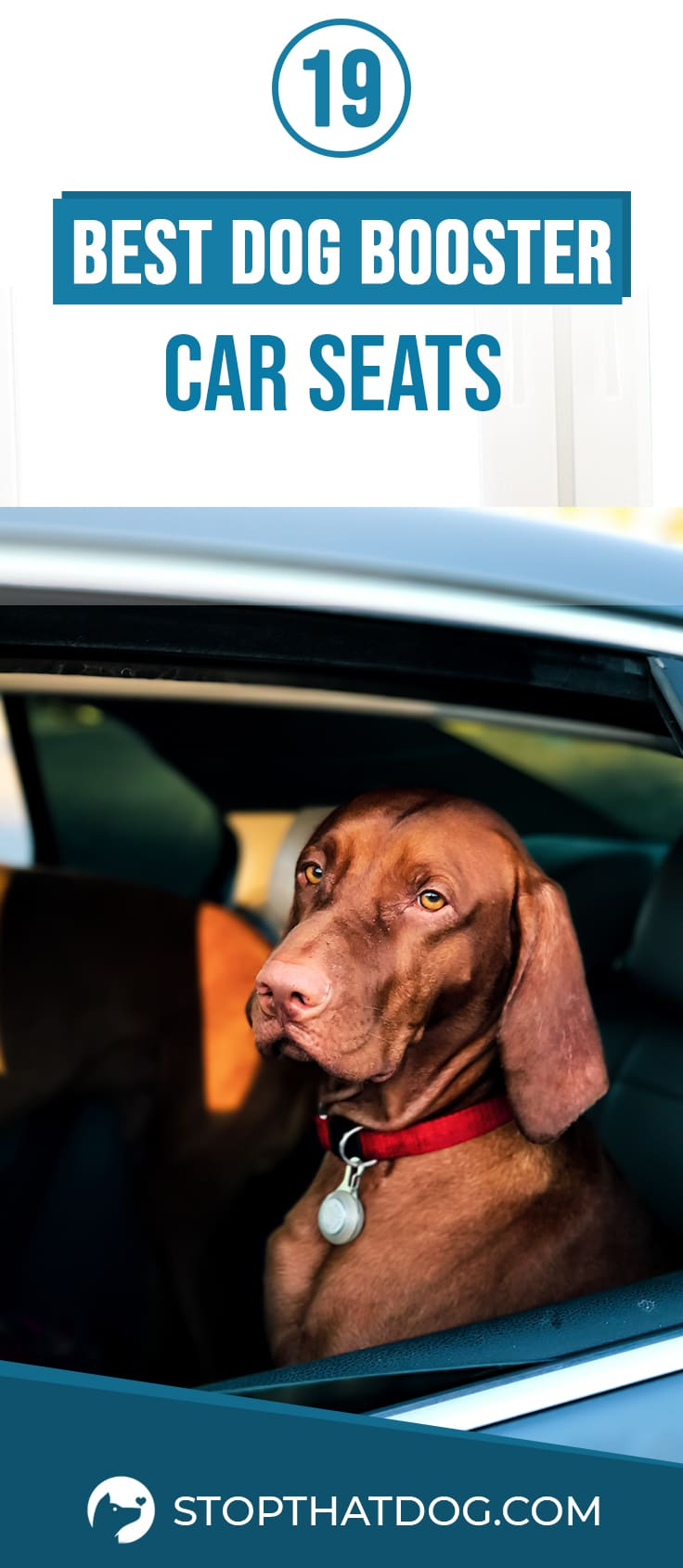 Dog Booster Car Seats – An In-Depth Guide (2020)