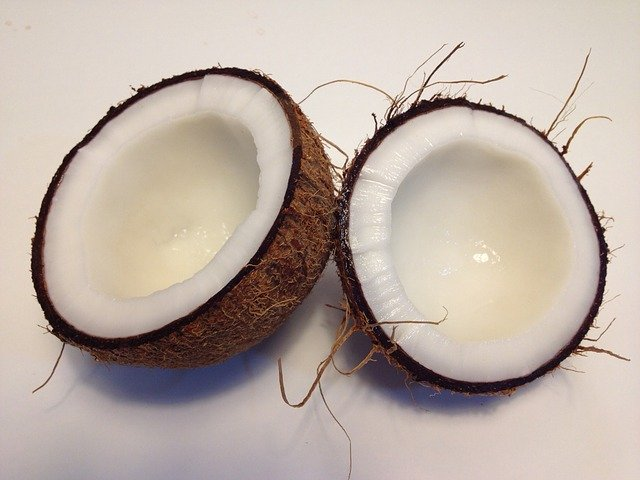 Can Dogs Eat Coconut? (and Coconut Oil?) Here's What You Should Know. 2